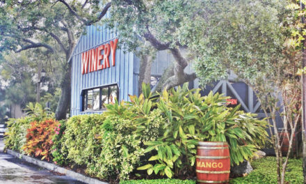 Florida Orange Groves Winery
