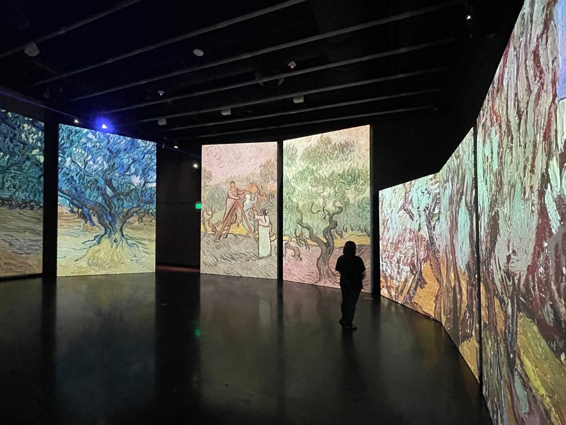 Van Gogh at the Dali Museum
