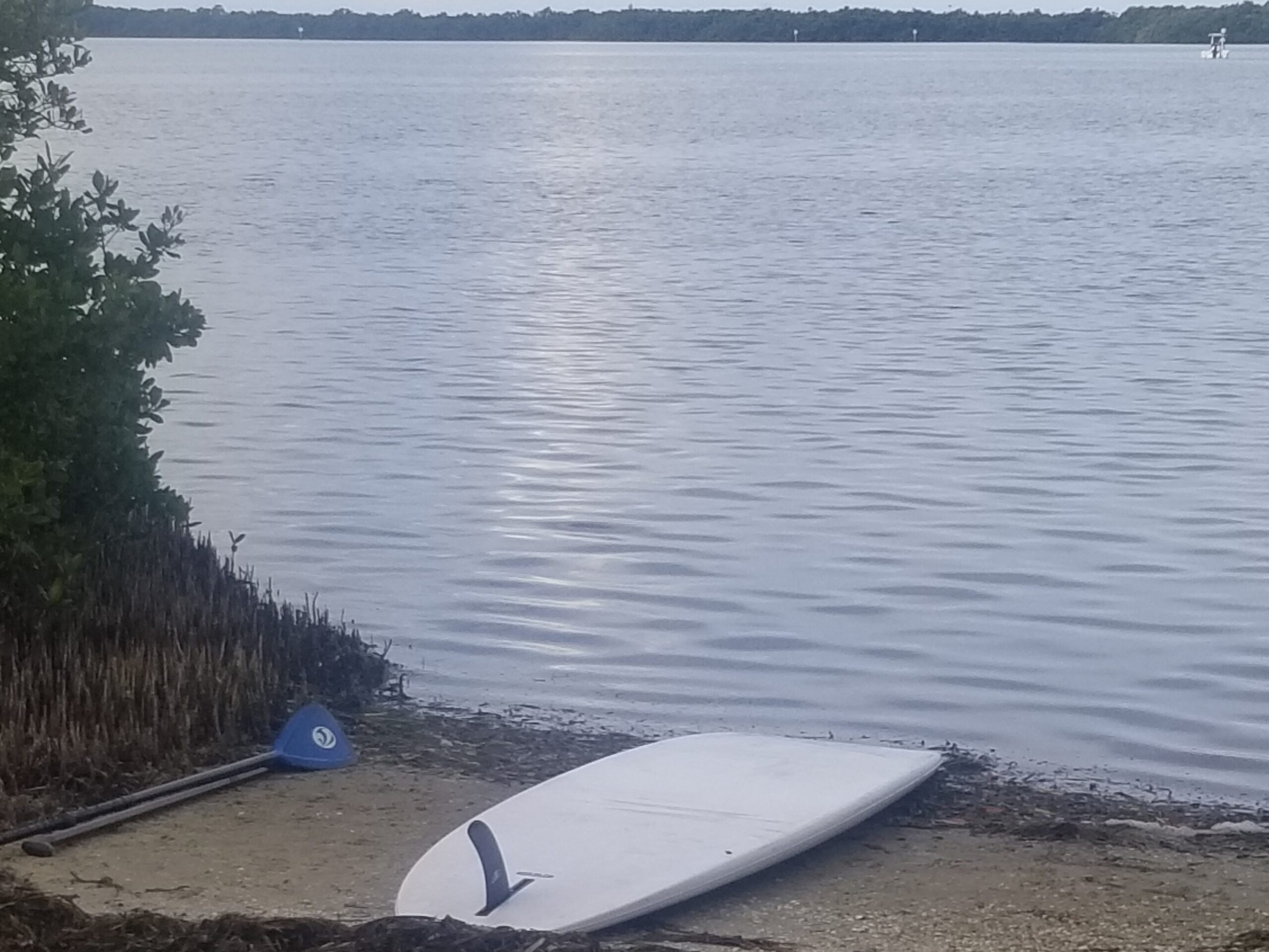 paddleboard at campsite